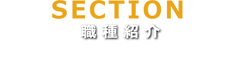 sections SECTION 職種紹介