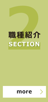 SECTION 職種紹介